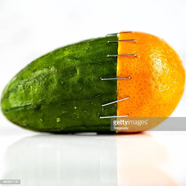 orange and cucumber stapled together - things that go together stock photos and pictures