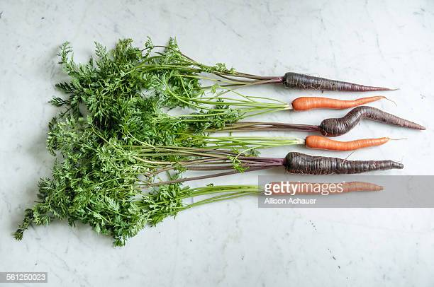 Orange and purple carrots with green tops