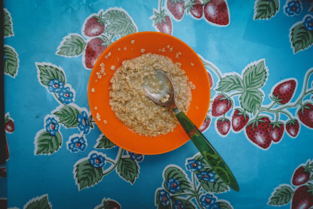 Orange Bowl of Watery Camp Oatmeal sits on a colorful oilcloth