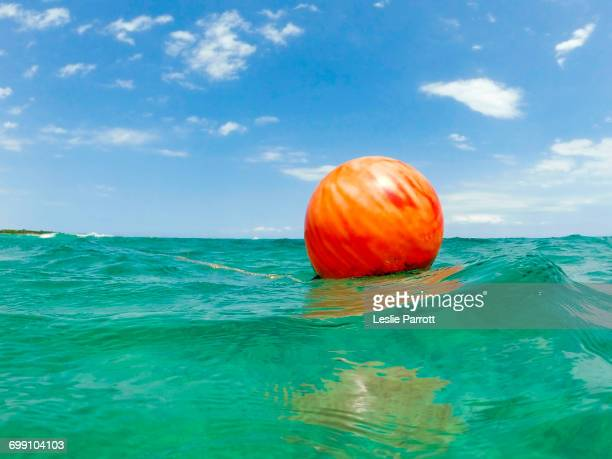 orange buoy in turquoise water - buoy stock photos and pictures