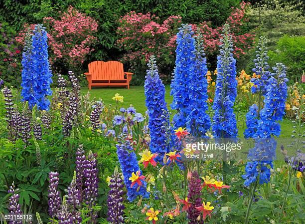 Orange chair in flower garden