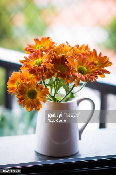 orange chrysanthemum flowers decorating window sill - orange flower stock pictures, royalty-free photos & images