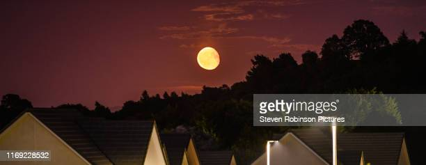 orange harvest moon rising over houses / town - harvest moon stock pictures, royalty-free photos & images