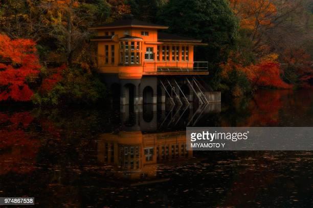 orange house beside lake, saitama, japan - miyamoto y ストックフォトと画像