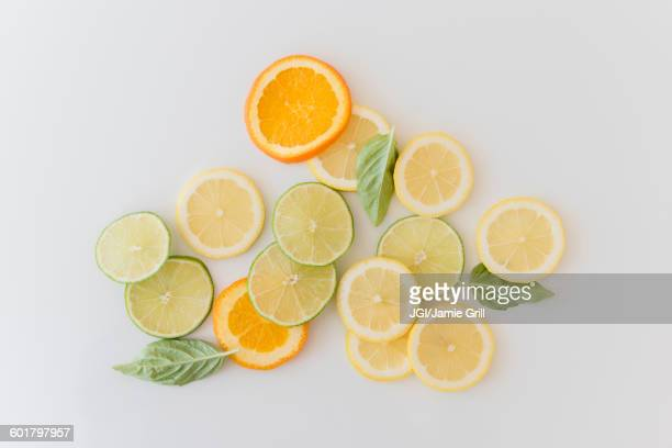 orange, lemon and lime slices - citrus fruit stock pictures, royalty-free photos & images