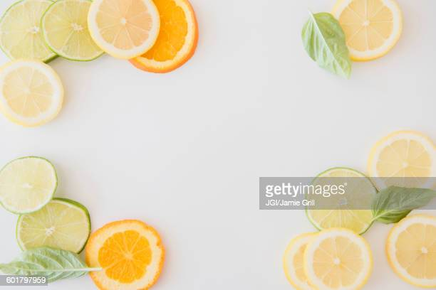 Orange, lemon and lime slices