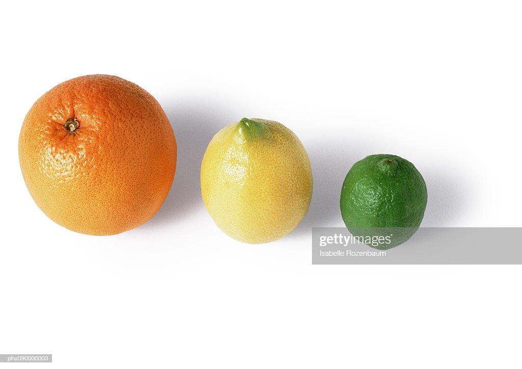 Orange, lemon and lime, white background : Stockfoto