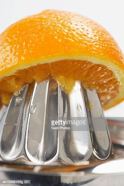 Orange on juicer, close-up