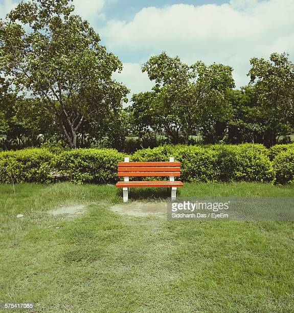 Orange Park Bench On Grassy Field In Park