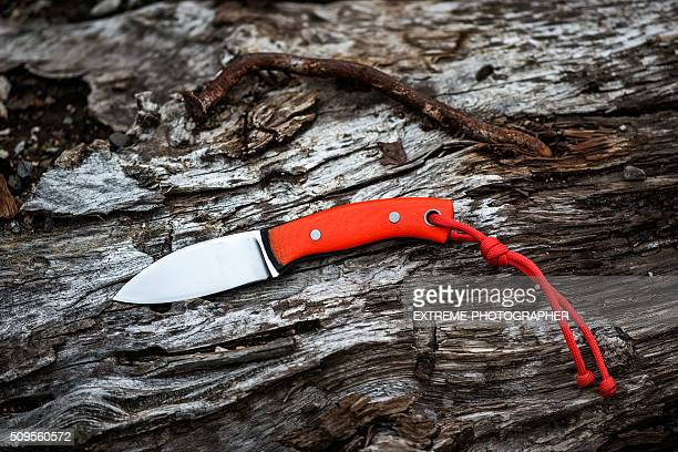 Orange penknife and rusty nail