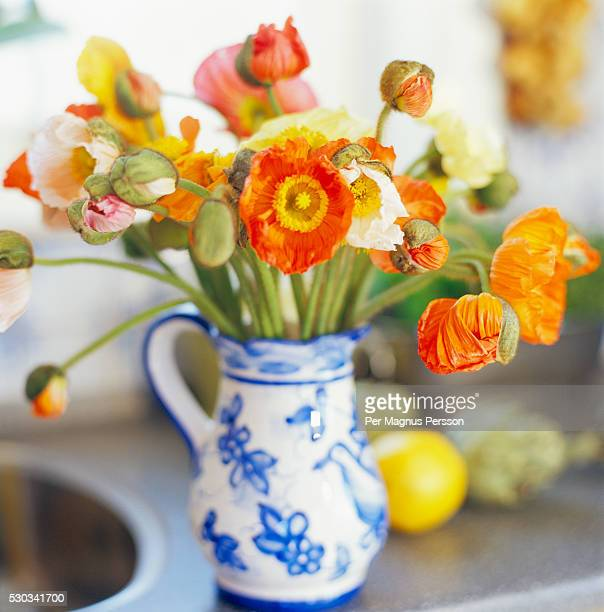 Orange poppies in vase on kitchen counter
