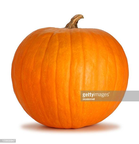 Orange Pumpkin Isolated on a White Background