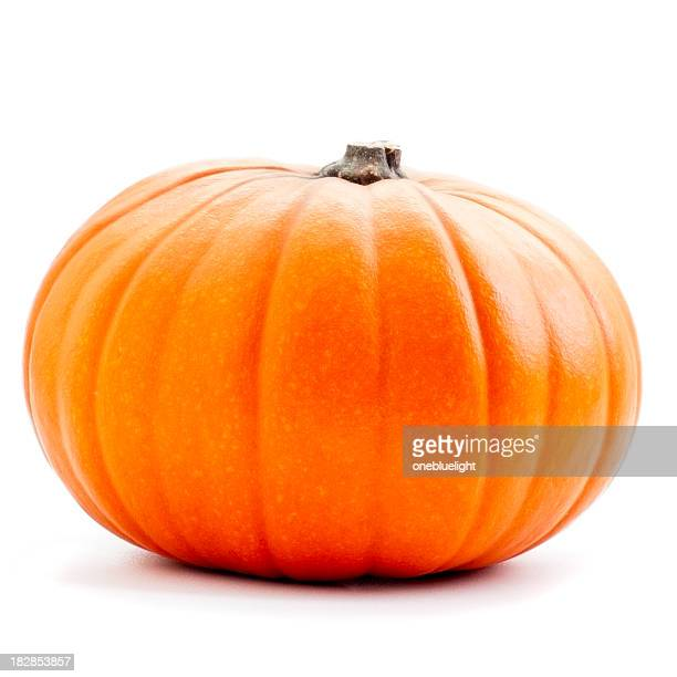 orange pumpkin on white background ( serie ) - onebluelight stock pictures, royalty-free photos & images