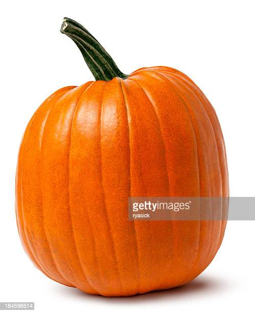 Orange Pumpkin with Twisted Stem Isolated Clipping Path