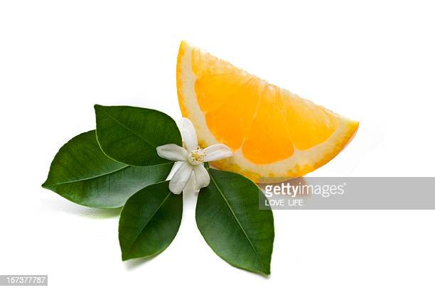 orange slice - blossom stock pictures, royalty-free photos & images