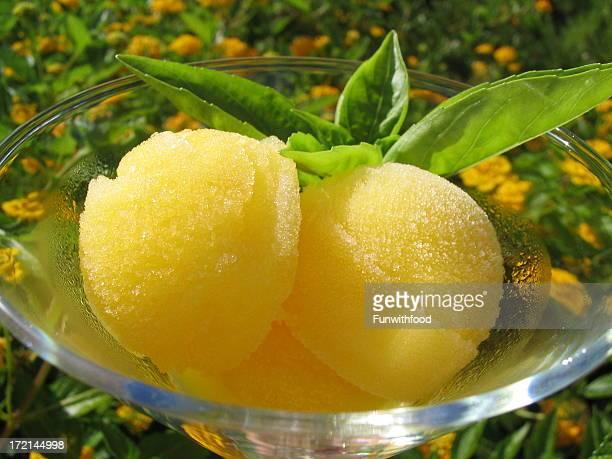 Orange Sorbet, Frozen Summer Ice Cream Dessert Food & Fresh Basil