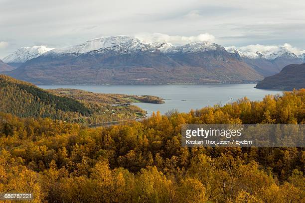Orange Trees By Lake And Snow Covered Mountains Against Sky