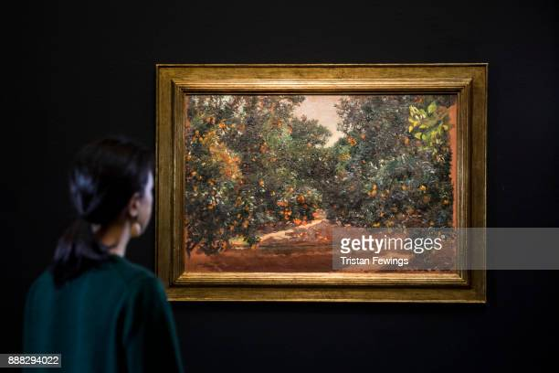 Orange Trees in Alcira by Spanish artist Joaqun Sorolla goes on view as part of the19th Century European Paintings sale at Sotheby's on December 8...