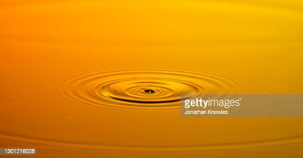 orange water ripple - growth stock pictures, royalty-free photos & images