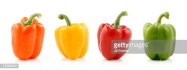 Orange, yellow, red and green bell peppers
