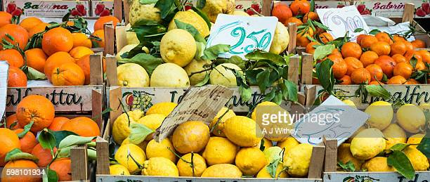oranges and lemons for sale in sorrento, italy - sorrento italy stock pictures, royalty-free photos & images