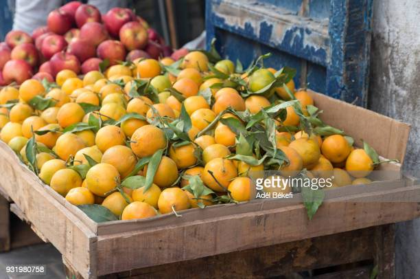 oranges at the market (Morocco, Essaouira)