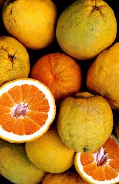 Oranges from Amalfi Coast.