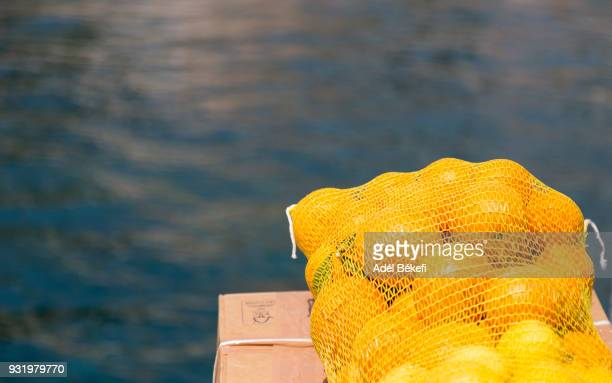 Oranges In Nets with sea background