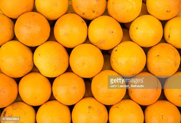 Oranges neatly arranged