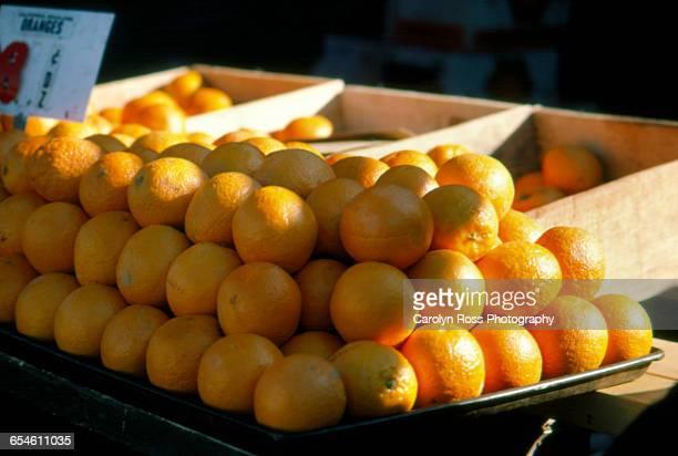 oranges - carolyn ross stock pictures, royalty-free photos & images