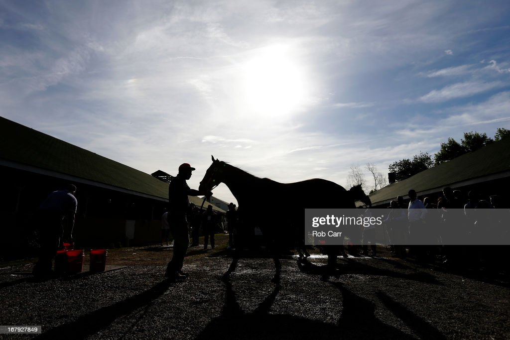 Orb is washed following a morning training session in preparation for the 2013 Kentucky Derby at Churchill Downs on May 2, 2013 in Louisville, Kentucky.