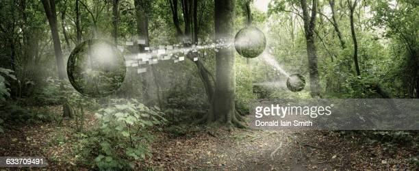Orbs passing pixelated information in remote forest