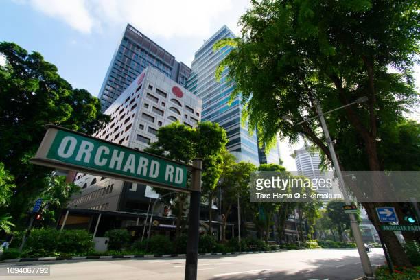 orchard road in singapore - orchard road fotografías e imágenes de stock