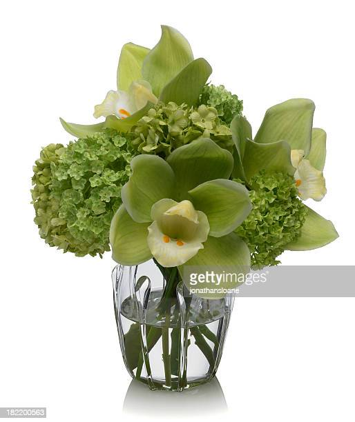 Orchid and Snowball bouquet on white background