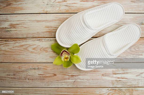 Orchid flower and slippers