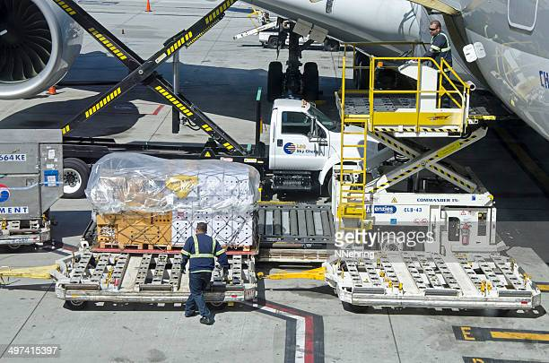 orchids being unloaded from airplane airbus 380 - cargo airplane stock photos and pictures
