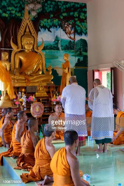 ordaining as buddhist monks. - tim bewer fotografías e imágenes de stock