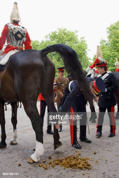 Orderly officer Captain Ed HowlandJackson inspects the men and horses of the Queen's Life Guard Hyde Park Barracks is the brick and concrete edifice...