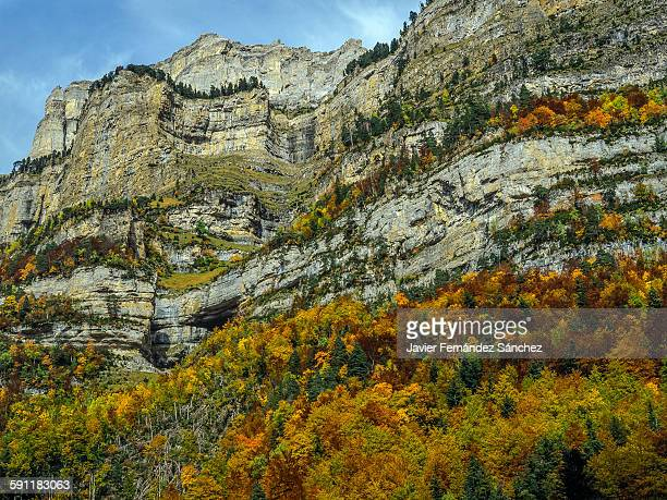 Ordesa National Park. Autumn