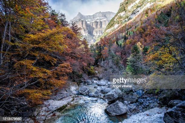 ordesa national park - aragon fotografías e imágenes de stock