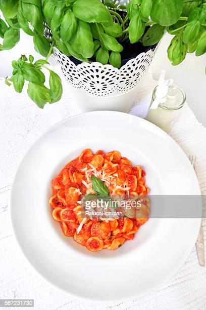 Orecchiette with Tomato paste, Basil and Parmesan sauce