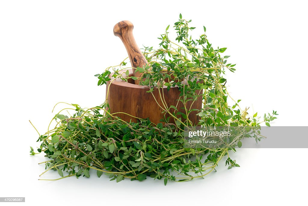 Oregano and Mortar and Pestle on white background : Stock Photo