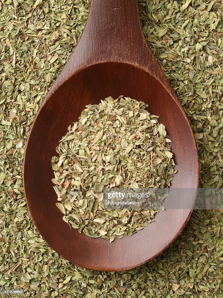 Oregano : Stock Photo
