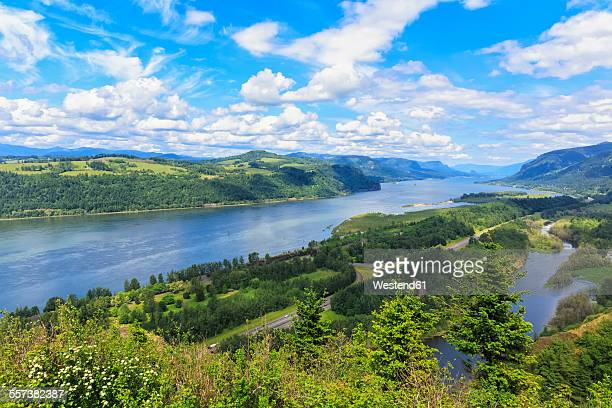 usa, oregon and washington, columbia river gorge as seen from crown point - columbia river gorge stock pictures, royalty-free photos & images