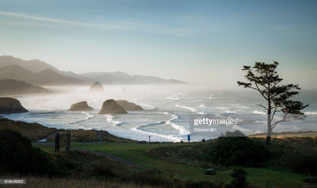 USA, Oregon, Cannon Beach at sunrise : ストックフォト