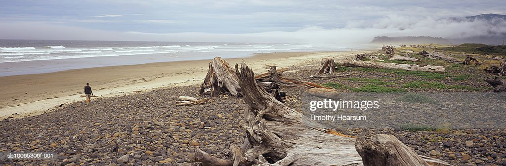 USA, Oregon, Cape Meares with driftwood and rocky shore in foreground : Foto stock