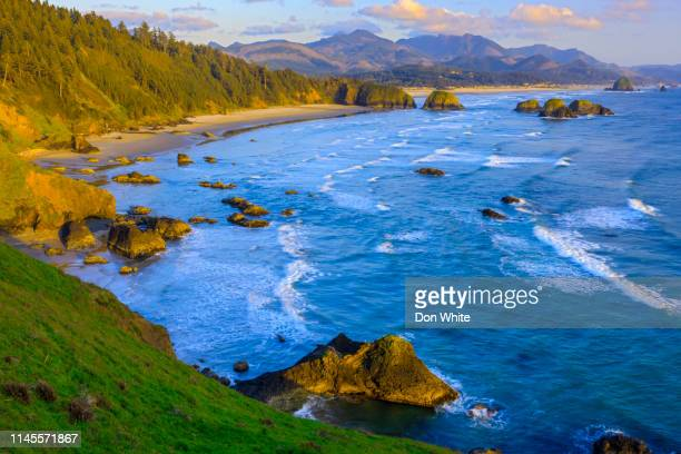oregon coastal region of the united states - pacific ocean stock pictures, royalty-free photos & images