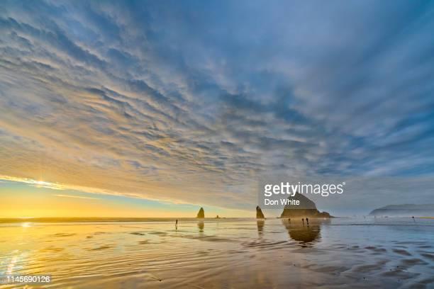 oregon coastal region of the united states - natural landmark stock pictures, royalty-free photos & images