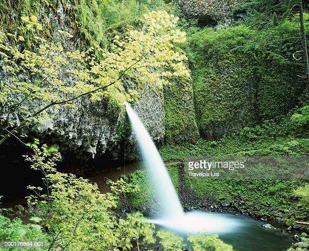usa, oregon, columbia gorge, horsetail falls - travel14 stock pictures, royalty-free photos & images