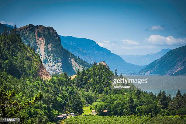 oregon columbia river gorge dramatic mountain forest landscape washington usa - hood river stock pictures, royalty-free photos & images